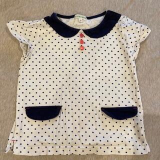 サンカンシオン(3can4on)のフレンチスリーブ半袖カットソー(Tシャツ/カットソー)