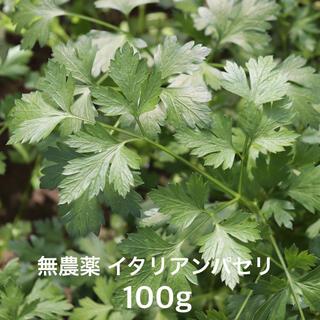 無農薬 イタリアンパセリ 100g(野菜)
