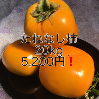 和歌山 たねなし柿 ご家庭用