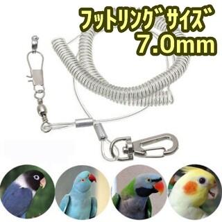 バード ハーネス リード スーツ インコ オウム(鳥)