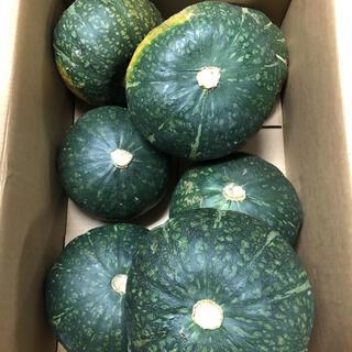 北海道えびすカボチャ7玉入り箱込み約10kg(野菜)