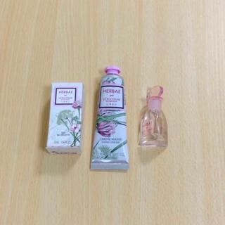 L'OCCITANE - ロクシタン 限定品エルバブランシュ 香水 ハンドクリームセット