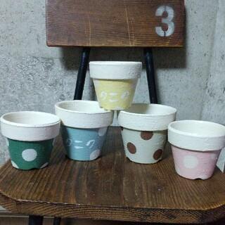 リメイク鉢☆5個☆多肉植物(プランター)