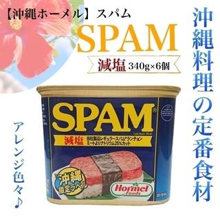 減塩 塩分カット スパム SPAM 肉 ランチョンミート 沖縄料理 ハム 簡単 (缶詰/瓶詰)