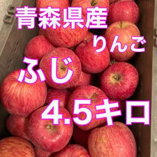 青森県産 ふじ 4.5キロ