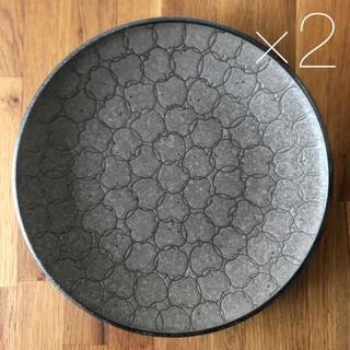 美濃焼 大皿 プレート 25.5cm   2枚 りんご
