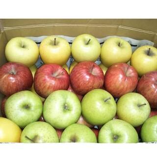 ○約10キロ  青森りんごセット ご自宅用○おまかせセット