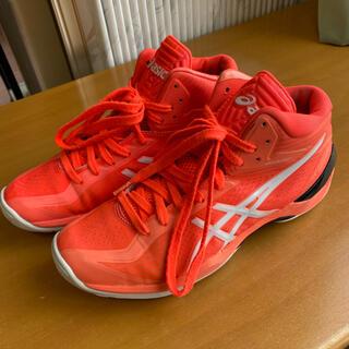 アシックス(asics)の24.0cm asics ゲルバースト 20th周年モデル(バスケットボール)