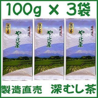 静岡茶 深むし茶100g×3個 送料無料 かのう茶店