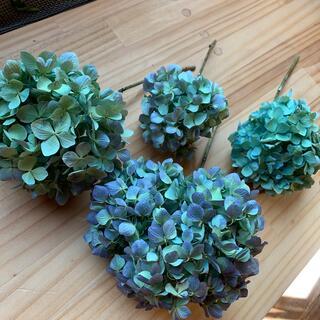 紫陽花ドライフラワー 茎付き 4本 RA3