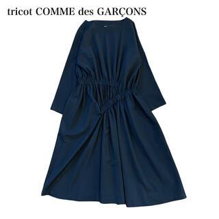 コムデギャルソン(COMME des GARCONS)のtricot COMME des GARÇONS ワンピース(ロングワンピース/マキシワンピース)