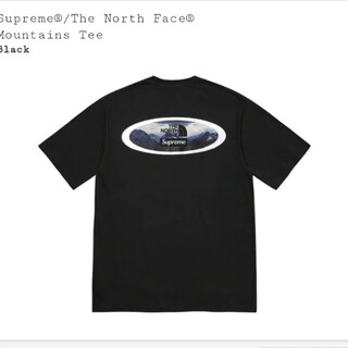Supreme - Supreme /The North Face Mountains Tee  M