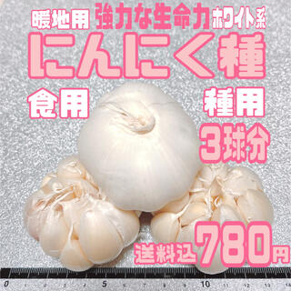 種ニンニク 暖地用ホワイト種 種・食用兼用 3球をバラシてネコポス送料込(野菜)