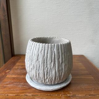 ホワイトエッグ植木鉢 Mサイズ(プランター)