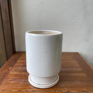 ホワイトトール植木鉢(プランター)