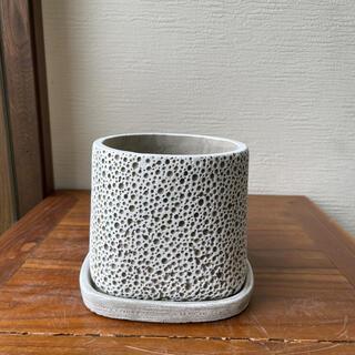 穴あきホワイト植木鉢(プランター)