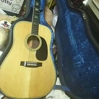 アリアカンパニー(AriaCompany)のとらじろうさま専用 シェルパール 本体美  ハードケース  ARIA  アコギ (アコースティックギター)