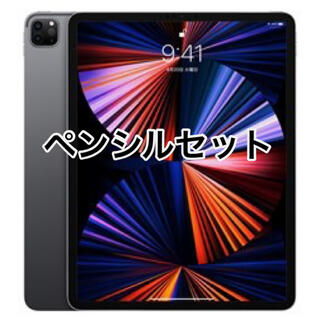 Apple - ipad pro 12.9インチ 第五世代 256GB wifi スペースグレイ