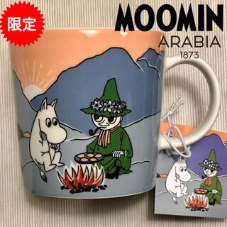 ARABIA - 新品 ノルウェー限定ARABIA ムーミン マグカップ インザマウンテン