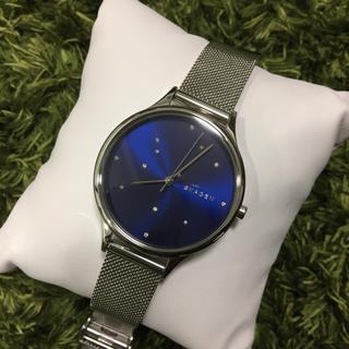スカーゲン(SKAGEN)のSKAGEN 腕時計 レディース SKW2391(腕時計)