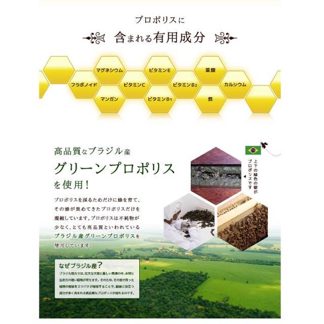 ローヤルゼリー グリーンプロポリス プロポリス 約1ヵ月分 ミツバチ ビタミン  食品/飲料/酒の健康食品(その他)の商品写真