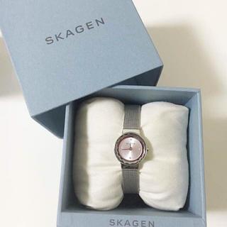 スカーゲン(SKAGEN)のSKAGEN SKW2184(腕時計)
