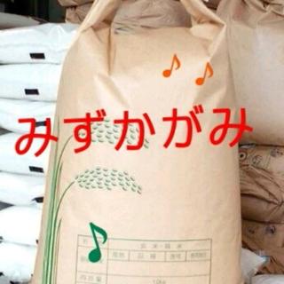 28年滋賀県産みずかがみ玄米30kg 食品/飲料/酒の食品(米/穀物)の商品写真