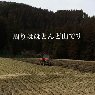 実家のお米 ヒノヒカリ 玄米30kg 食品/飲料/酒の食品(米/穀物)の商品写真