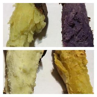 ♡四種類食べ比べセット1.5キロおまけ付き♡(野菜)