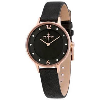 スカーゲン(SKAGEN)のSKAGEN スカーゲン レディース腕時計 アニタ(腕時計)