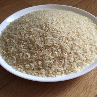五分づき米 新米 ヒノヒカリ100% 5合(米/穀物)
