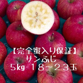 〈期間限定〉りんご王者の作る 【完全蜜入り保証 サンふじ】ご家庭用5kg(フルーツ)