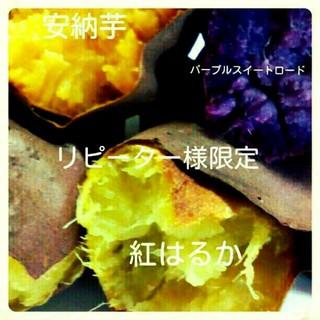 K&浜ちゃん専用(野菜)