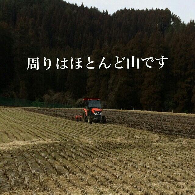 実家のお米 新米ヒノヒカリ 玄米30kg 食品/飲料/酒の食品(米/穀物)の商品写真