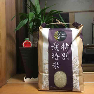Blue.様専用ページ【送料無料】新米つや姫(米/穀物)