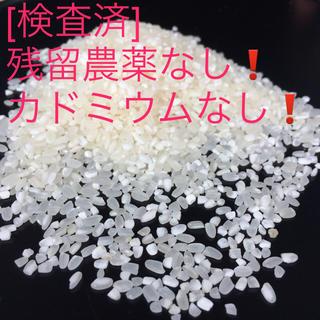 ま〜ちゃん!様専用 規格外:小粒のお米25kg 28年産 にこまる+ヒノヒカリ 食品/飲料/酒の食品(米/穀物)の商品写真