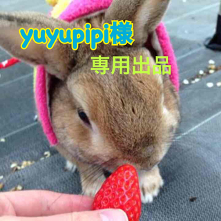 エーケービーフォーティーエイト(AKB48)のyuyupipi様♡専用出品(携帯用ゲーム本体)