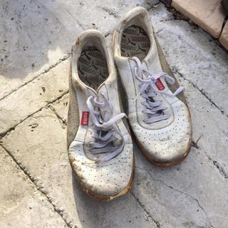 プーマ(PUMA)のプーマ 靴(スニーカー)