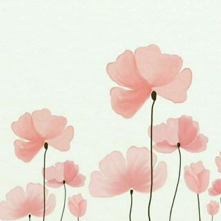 ディオール(Dior)の【かーこ様専用】❤超美品❤Diorメガネフレーム(サングラス/メガネ)