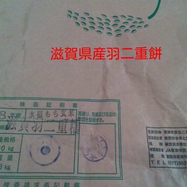 もち米500g✖️2 食品/飲料/酒の食品(米/穀物)の商品写真