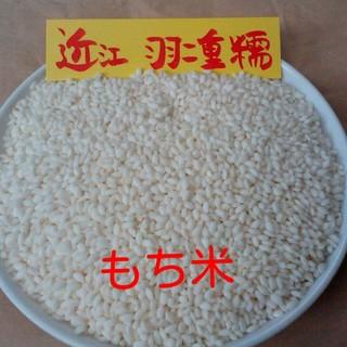 もち米500g 食品/飲料/酒の食品(米/穀物)の商品写真