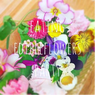 送料無料*新鮮!エディブルフラワー20輪*食用花の花束お届けします*(野菜)