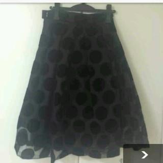 ルシェルブルー(LE CIEL BLEU)のルシェルブルー 完売 ドットスカート(ひざ丈スカート)