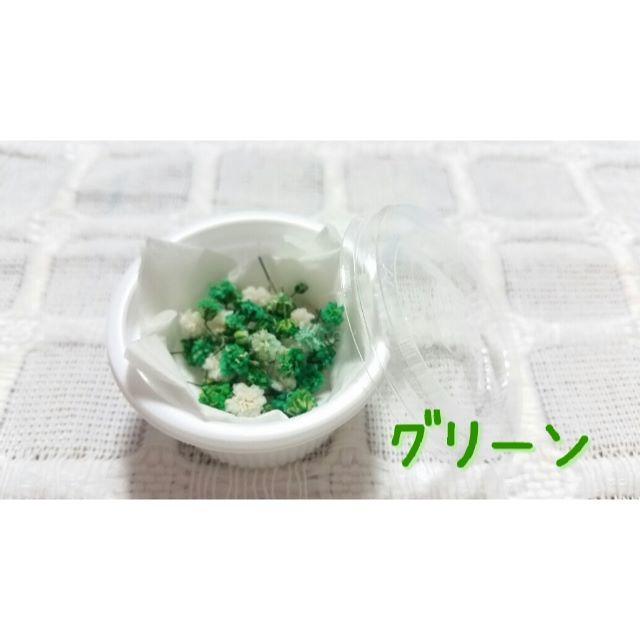 ♡かすみ草♡ドライフラワー♡グリーン【送料無料】 ハンドメイドの素材/材料(その他)の商品写真