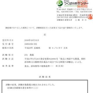 規格外:小粒のお米4kg 28年産 にこまる 食品/飲料/酒の食品(米/穀物)の商品写真
