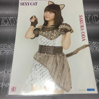 モーニングムスメ(モーニング娘。)の小田さくら セクシーキャットの演説 ピンナップポスター(アイドルグッズ)