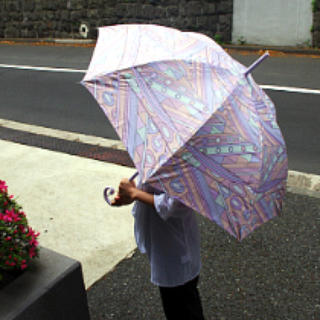 リエンダ(rienda)のリエンダノベルティー傘♡(傘)