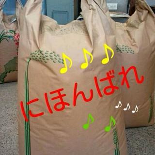 28年滋賀県産日本晴玄米30kg 食品/飲料/酒の食品(米/穀物)の商品写真