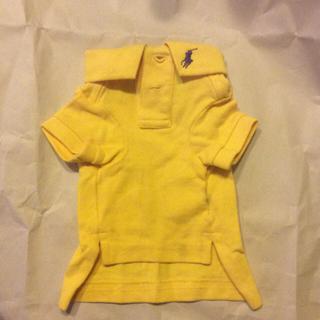 ラルフローレン(Ralph Lauren)のおまけ追加 小型犬用 ラルフローレン ポロシャツ (ペット服/アクセサリー)