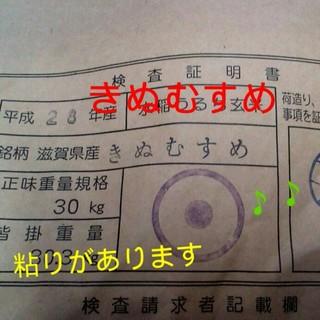 28年滋賀県産きぬむすめ玄米10kg 食品/飲料/酒の食品(米/穀物)の商品写真